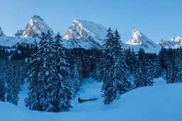 Snowshoeing in Toggenburg