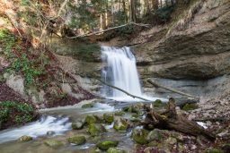 Ravine Waterfalls: Wildbachtobel