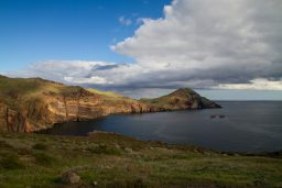 Madeira's Coast