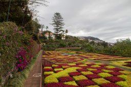 Madeira's Gardens