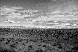 B&W Wednesday: Desert