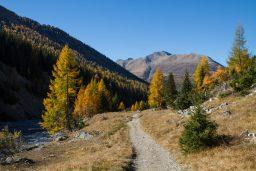 Hiking in Val Trupchun