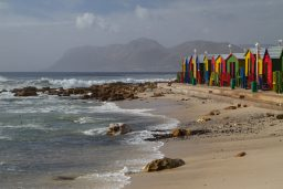 Around the Cape Peninsula