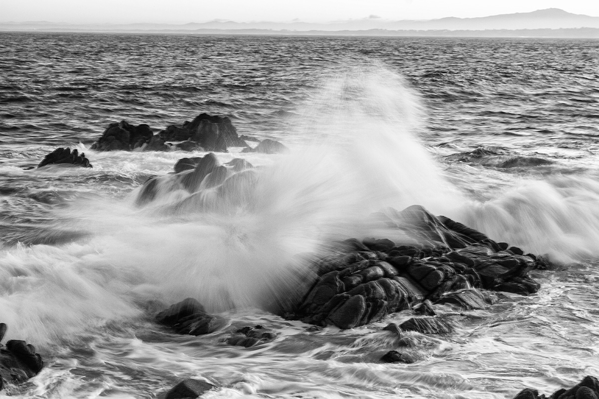 B&W Wednesday: Wave